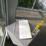Ostergarten Bibel innen